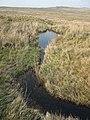 Afon Rhydyrhalen. - geograph.org.uk - 417621.jpg