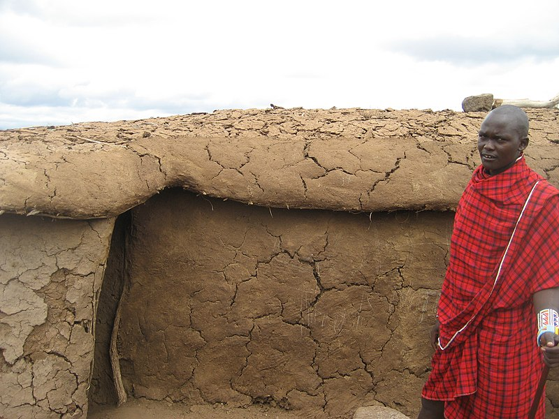 File:Africa, Cow dung coated home, 2011.jpg - Wikimedia ...
