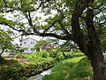 Akada, Toyama, Toyama Prefecture 939-8064, Japan - panoramio.jpg