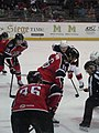 Albany Devils vs. Portland Pirates - December 28, 2013 (11622957006).jpg