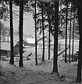Aldrans in de sneeuw gezien vanuit het bos, Bestanddeelnr 254-4301.jpg