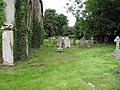 All Saints, Tacolneston, Norfolk - Churchyard - geograph.org.uk - 853143.jpg