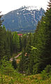 Alpen 0002 by Ayhan Arfat.jpg