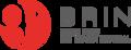 Alt Logo BRIN.png