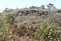 Alto Araguaia - State of Mato Grosso, Brazil - panoramio (319).jpg