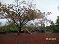 Anandvan Resort Playground for Children - panoramio.jpg