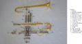 Anatomie de la trompette.png