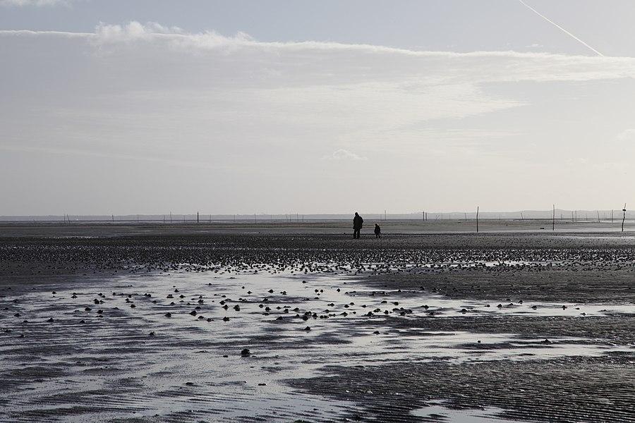 La plage en hiver (marée basse)