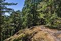 Anderson Cove Trail, East Sooke Regional Park, British Columbia, Canada 14.jpg