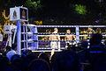Andrei vs Singmanee 3.jpg