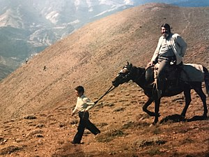 Anthony Bryer - Anthony Bryer on a mule in Turkey