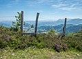 Arangio - Paso en una valla.jpg