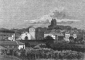 Donzelinho branco - An 1868 drawing of vines growing in front of the commune of Lamego where Donzelinho branco has a history of being grown.