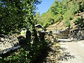 Arcy, grottes--entrance surrounds 1.jpg