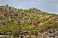 Arghavan valley, Ilam 2020-04-15 06.jpg