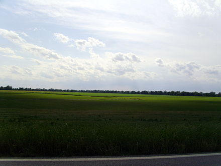 The flat terrain and rich soils of the Arkansas Delta near Arkansas City are in stark contrast to the northwestern part of the state. Arkansas Delta, Desha County, AR.jpg