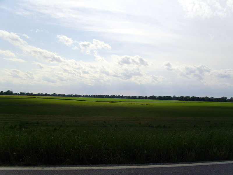 File:Arkansas Delta, Desha County, AR.jpg