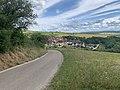 Arrivée à Irancy (Yonne) par la route de Saint-Bris, juin 2020 (1).jpg