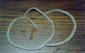 Ascaris lumbricoides adult worms.png