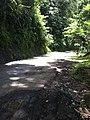 Askes jln cibinong sindangbarang - panoramio.jpg