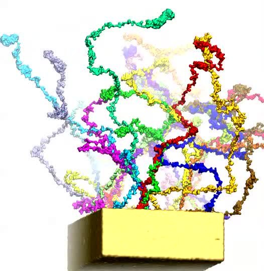 File:Assembly-of-Nsp1-Nucleoporins-Provides-Insight-into ...