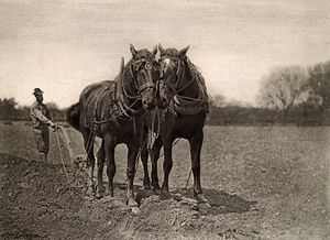 "Peter Henry Emerson - ""At Plough, The End of the Furrow"", from Emerson's photographic album 'Pictures From Life in Field And Fen,', 1887"