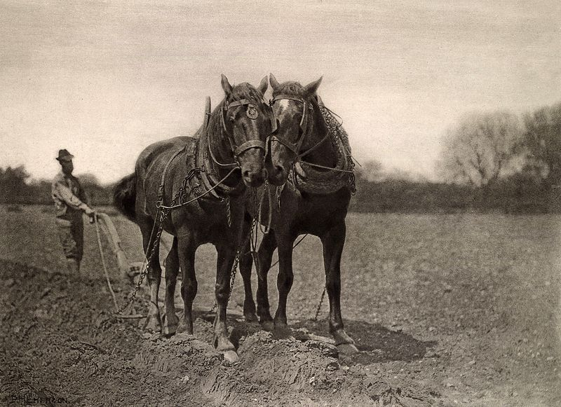 File:At Plough, The End Of The Furrow, Peter Henry Emerson, 1887.jpg