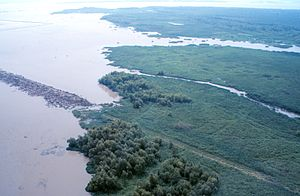 Atchafalaya Basin - Image: Atchafalaya Bay