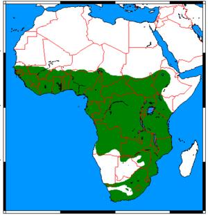 Marsh mongoose - Image: Atilax paludinosus range map