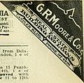 Atlanta City Directory (1913) (14598164159).jpg