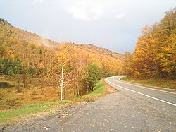 Autumn colors along the road.jpg