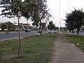 Av Trapiche - Urb. El Pinar Comas - panoramio.jpg