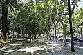 Avenida da Liberdade - panoramio.jpg