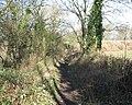 Avon & Glos. Railway. - panoramio - Bob&Anne Powell (1).jpg