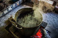 Ayahuasca brewing 02.jpg
