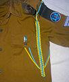 Azure & Yellow Aiguillette of the IDF.JPG