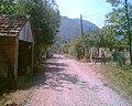 Bıçkı mahallesi - panoramio.jpg