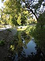 Bački Petrovac - river 2.jpg