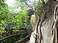 Bajada a Salto de San Antón 3.JPG