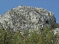 Banat, St.Helena - panoramio (43).jpg