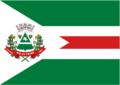 Bandeira Município Rio do Prado - MG.png