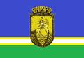Bandeira de São Gabriel da Cachoeira (AM).png