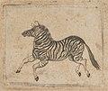 Banknote vignette showing a zebra MET DP837983.jpg
