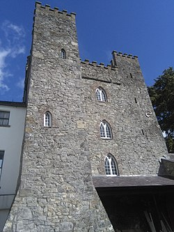 Barberstown Castle, Straffan (closeup of tower).jpg