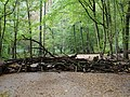 Barrier in the Hambach forest 05.jpg