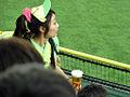 Baseball 2011 (5865942321).jpg