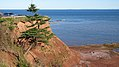 Beach Point Coast, Prince Edward Island (471039) (9447853025).jpg