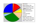 Becker Co Pie Chart Newest No Text Version.pdf