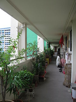 Neighbours in an HDB block usually share a common corridor