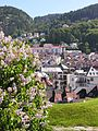 Bergen View 2006.jpg